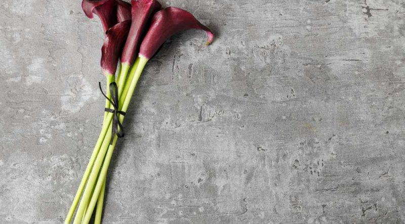 62 frases de luto que ajudam a superar a perda de alguém