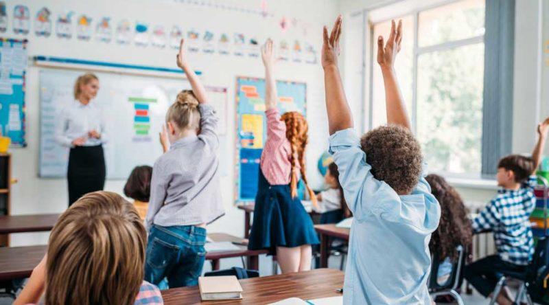 40 frases sobre educação que vão inspirar você