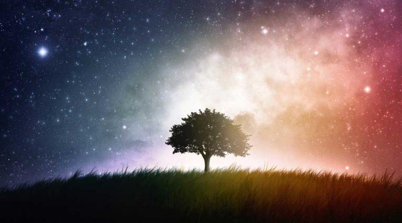 42 frases de sonhos para servir de inspiração e correr atrás do seu
