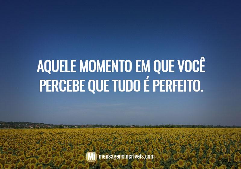 Aquele momento em que você percebe que tudo é perfeito.