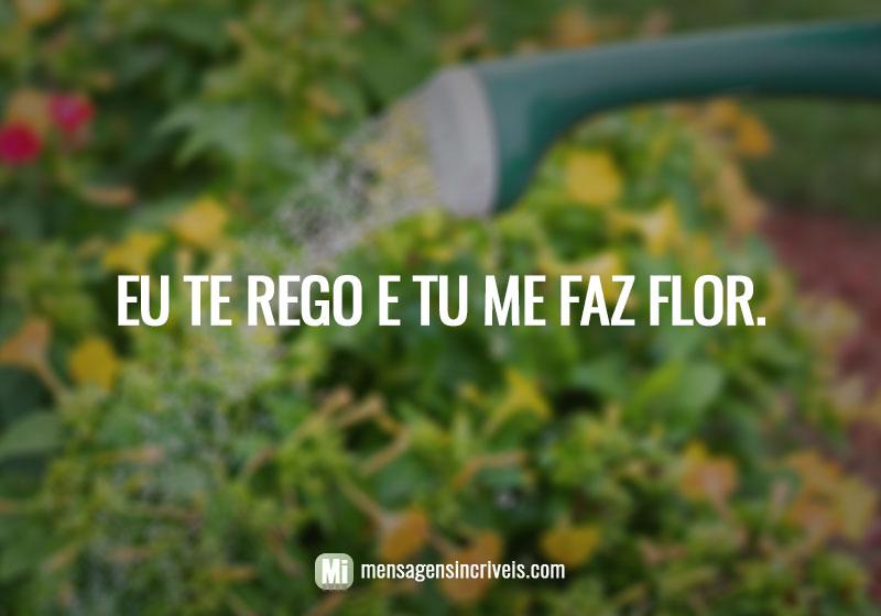 https://www.mensagensincriveis.com/wp-content/uploads/2019/08/eu-te-rego-e-tu-me-faz-flor.jpg