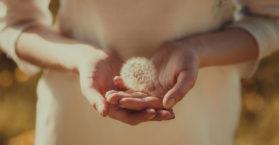 44 frases de humildade para compartilhar e refletir