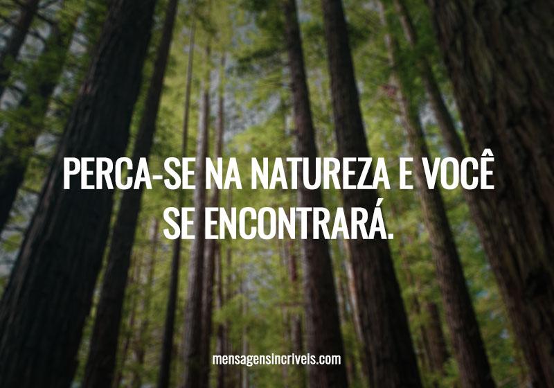 Perca-se na natureza e você se encontrará.