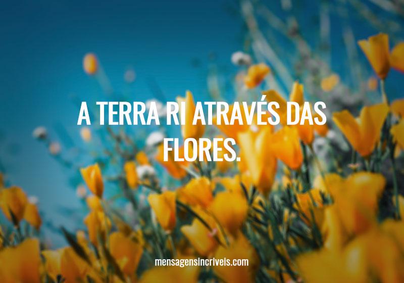 A terra ri através das flores.