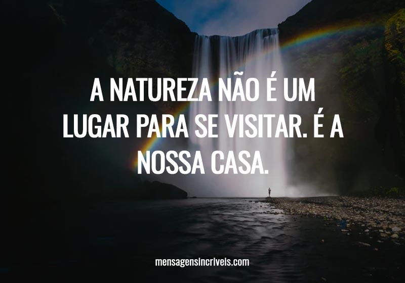 A natureza não é um lugar para se visitar. É a nossa casa.