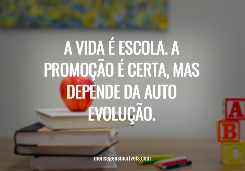 A vida é escola. A promoção é certa, mas depende da auto evolução.