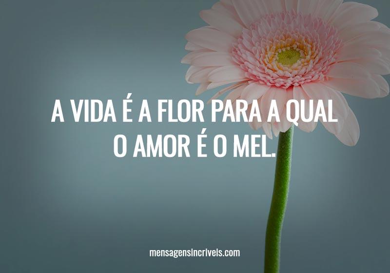 A vida é a flor para a qual o amor é o mel.