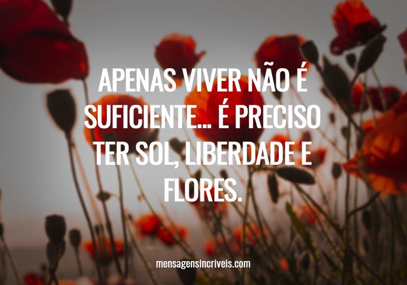 Apenas viver não é suficiente... É preciso ter sol, liberdade e flores.
