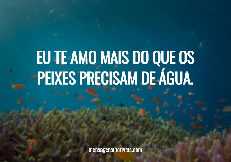 Eu te amo mais do que os peixes precisam de água.